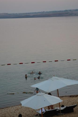 SEP 11 Floating in the Dead Sea at the Hilton (131)