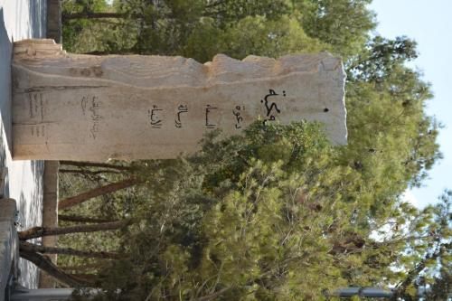 Sep 9 Mount Nebo  (10)