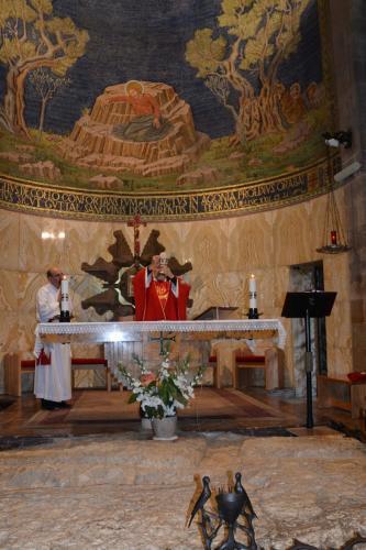 Sept 14 Friday Church of Gethsemene Church of All Nations (89)