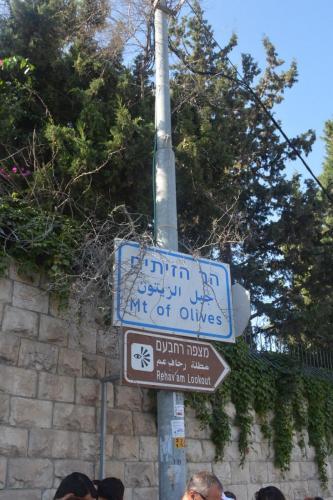 Sept 14 Friday Dominus Flevit Mount Of Olives Jesus Wept (2)
