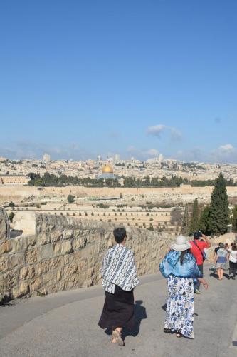 Sept 14 Friday Dominus Flevit Mount Of Olives Jesus Wept (38)