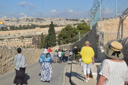 Sept 14 Friday Dominus Flevit Mount Of Olives Jesus Wept (39)