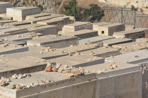 Sept 14 Friday Dominus Flevit Mount Of Olives Jesus Wept (41)