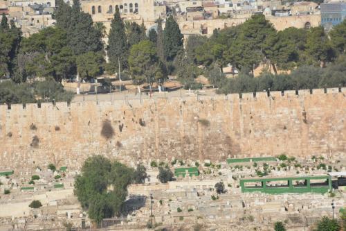 Sept 14 Friday Dominus Flevit Mount Of Olives Jesus Wept (44)