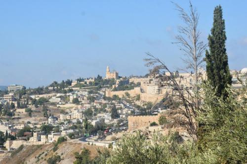 Sept 14 Friday Dominus Flevit Mount Of Olives Jesus Wept (47)