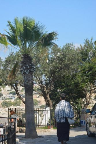 Sept 14 Friday Dominus Flevit Mount Of Olives Jesus Wept (50)