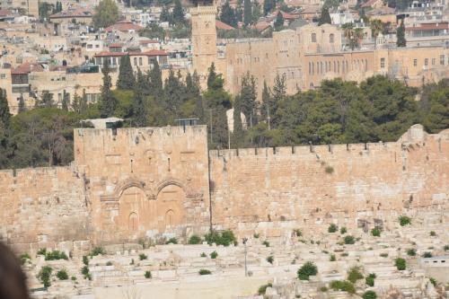 Sept 14 Friday Dominus Flevit Mount Of Olives Jesus Wept (63)