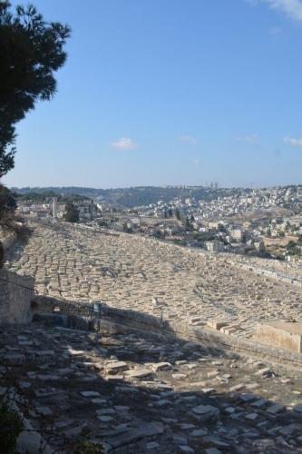 Sept 14 Friday Dominus Flevit Mount Of Olives Jesus Wept (70)