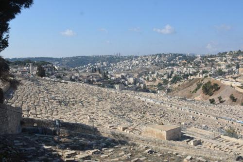Sept 14 Friday Dominus Flevit Mount Of Olives Jesus Wept (71)