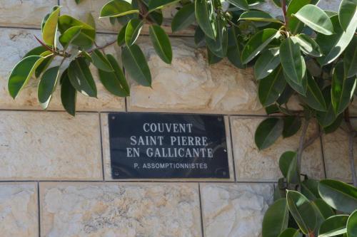Sept 14 Friday St Peter Galancitu (11)