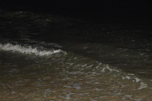SEp 17 Night time in Tel Aviv on Mediteranean sea (37)